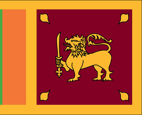 Sri Lanka releases report on Constitutional Reform