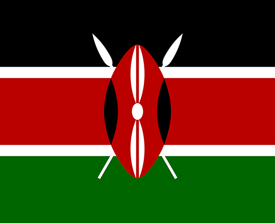 Kenyan LGBT organisation wins right to register as official NGO