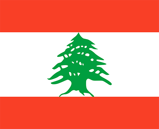 Supreme Court decision brings Lebanon a step closer to decriminalising consensual same-sex sexual conduct