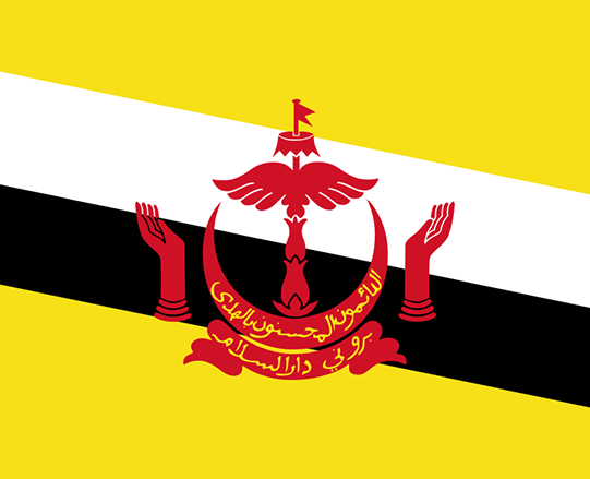 Human Dignity Trust condemns Brunei's brutal new Islamic Penal Code